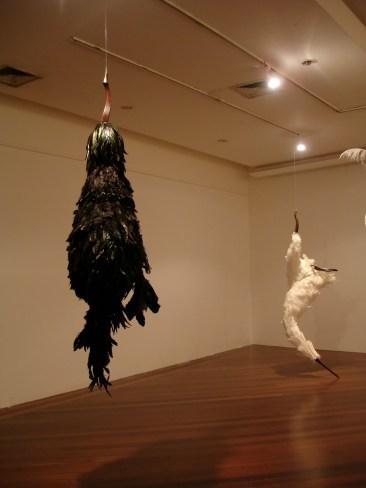 pássaro, 2009