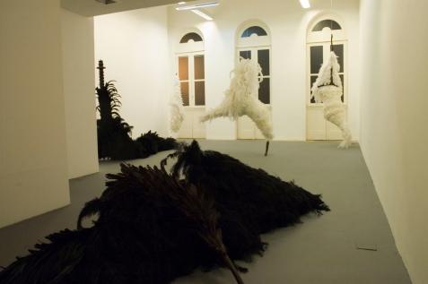pássaros (panorâmica), 2010