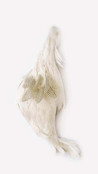 Pássaro, 2011