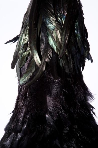 pássaro, 2009 (detalhe)