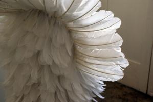 pássaro, 2010 (detalhe)