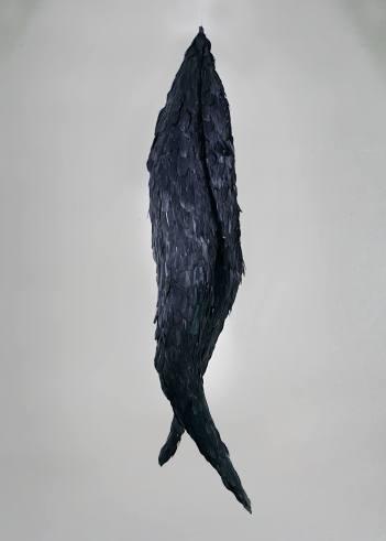 pássaro, 2017