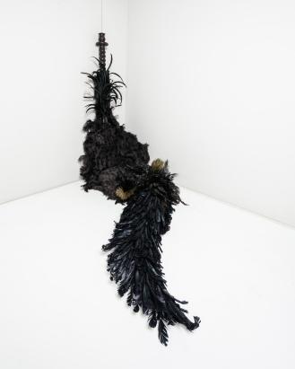 pássaro, 2010