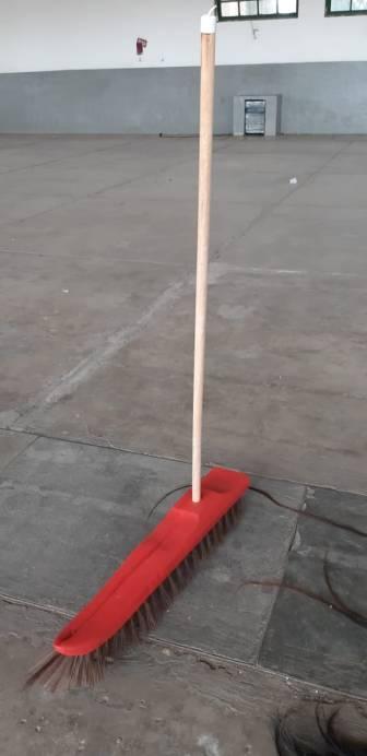limpando o chão com a língua, 2019-2020